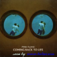 pink floyd coming back life